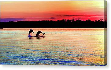 Dolphin Canvas Print - Joy Of The Dance by Karen Wiles