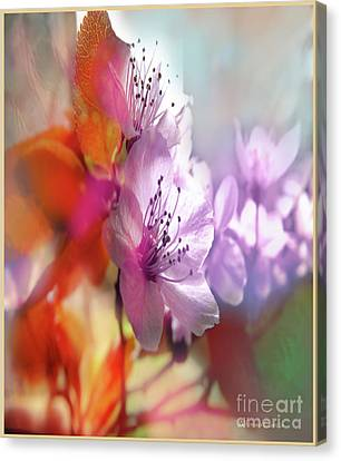 Canvas Print featuring the photograph Juego Floral by Alfonso Garcia
