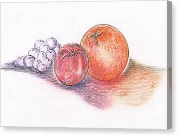Juicy Fruits Canvas Print