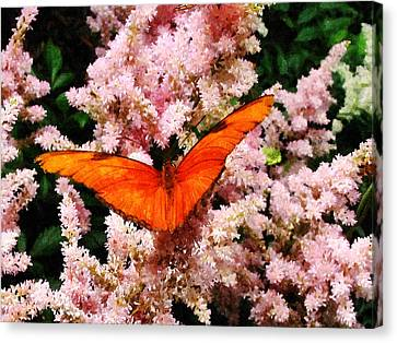 Julia Butterfly On Pink Flowers Canvas Print by Susan Savad