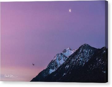 Jumbo Sunrise Canvas Print