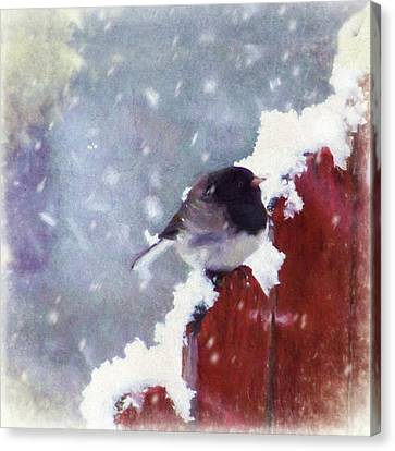Canvas Print featuring the digital art Junco In The Snow, Square by Christina Lihani