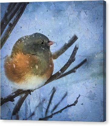 Canvas Print featuring the digital art Junco On Winter Day by Christina Lihani