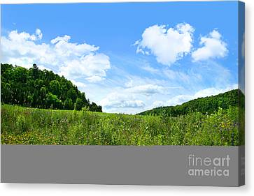 June Flowers With Bright Summer Sky Canvas Print by Sandra Cunningham