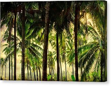Jungle Paradise Canvas Print by James BO  Insogna