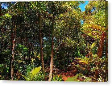 Canvas Print featuring the photograph Jungle Trek by Mark Blauhoefer