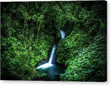 Canvas Print featuring the photograph Jungle Waterfall by Nicklas Gustafsson