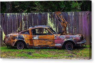 Junker By Fence Canvas Print by Garry Gay