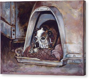 Junkyard Dog Canvas Print by Harvie Brown