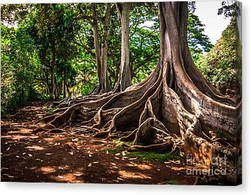 Jurassic Park Tree Group Canvas Print