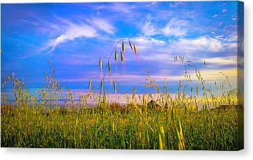 Laying On Stomach Canvas Print - Just A Little Grainy by Kenny Green