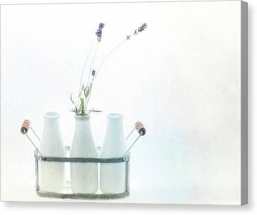 Canvas Print featuring the photograph Just A Little Lavender by Rebecca Cozart