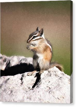 Just A Little Nibble Canvas Print by Lana Trussell