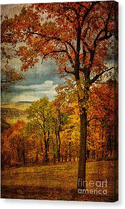 Mountain View Canvas Print - Just Another Day In Paradise. by Lois Bryan