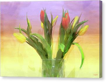 Just Like Spring Canvas Print by Declan O'Doherty