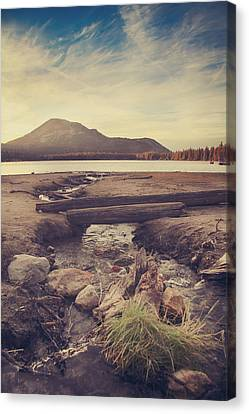 Driftwood Canvas Print - Just One More Kiss  by Laurie Search