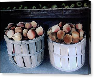 Just Peachy Canvas Print by Charles Hill