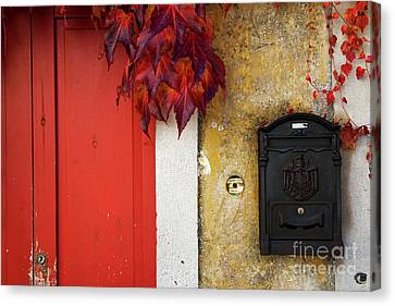 Canvas Print featuring the photograph Just Red by Yuri Santin