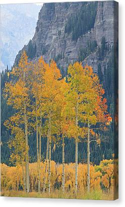 Canvas Print featuring the photograph Just The Ten Of Us by David Chandler