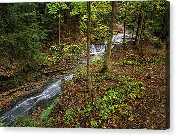 Canvas Print featuring the photograph Just To Be by Dale Kincaid