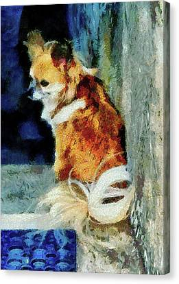 Just Waiting Canvas Print by Dorothy Berry-Lound