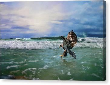 Eagle In Flight Canvas Print - Juvenile Eagle At Sea Wildlife Art by Jai Johnson