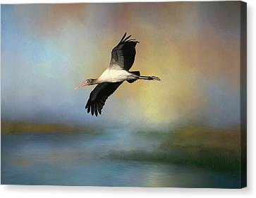 Canvas Print featuring the photograph Juvenile Woody by Donna Kennedy