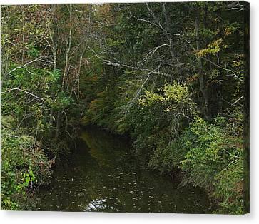 Kaaterskill Creek In Calm Canvas Print
