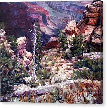 Kaibab Trail Canvas Print by Donald Maier