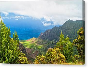 Kalalau Valley 2 Canvas Print by Brian Harig