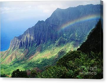 Kalalau Valley Viewpoint Canvas Print by Rita Ariyoshi - Printscapes