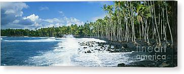 Kalapana Black Sand Beach Canvas Print by David Cornwell First Light Pictures Inc - Printscapes
