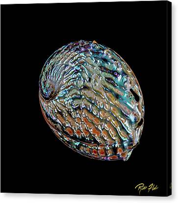 Canvas Print featuring the photograph Kaleidoscope Abalone by Rikk Flohr