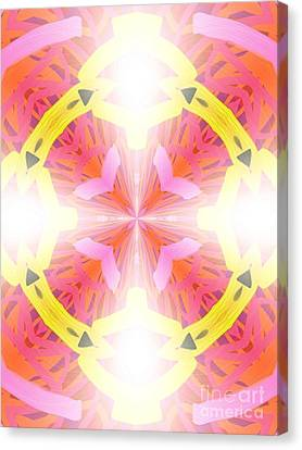 Kaleidoscope Lights Canvas Print by Roxy Riou