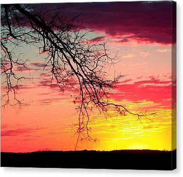 Kaleidoscope Skies Canvas Print by Kimmy Hutchins