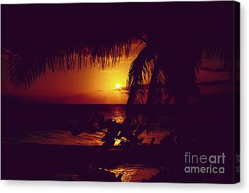 Canvas Print featuring the photograph Kamaole Tropical Nights Sunset Gold Purple Palm by Sharon Mau