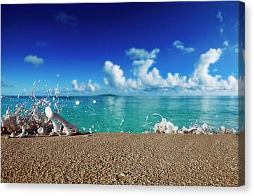 Kammie Foam Canvas Print