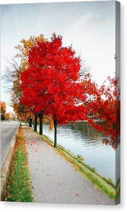 Kanawha Boulevard In Autumn Canvas Print by Shane Holsclaw