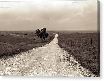 Kansas Country Road Canvas Print by Thomas Bomstad