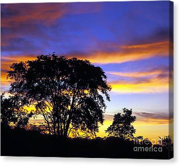 Kansas Sunset1 Canvas Print