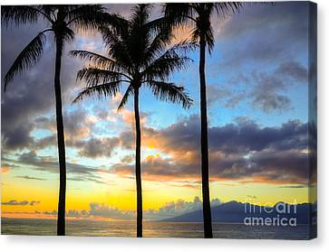Canvas Print featuring the photograph Kapalua Dream by Kelly Wade