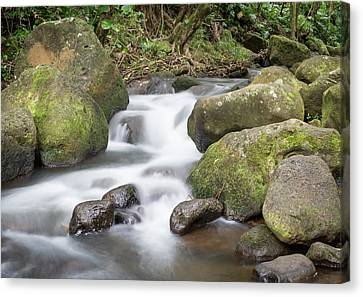 Kauai Flow Canvas Print