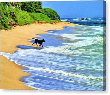 Kauai Water Dog Canvas Print