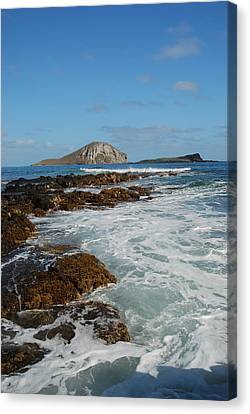 Kaupo Beach Canvas Print by Michael Peychich