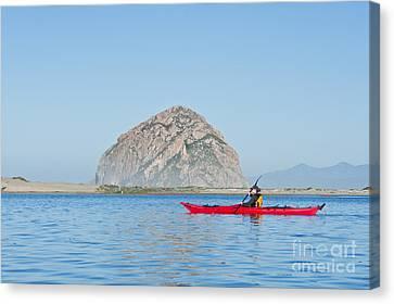 Kayaker In Morro Bay Canvas Print by Bill Brennan - Printscapes