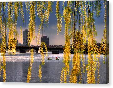 Kayaking On The Charles River - Boston Canvas Print