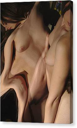 Kazi0830 Canvas Print