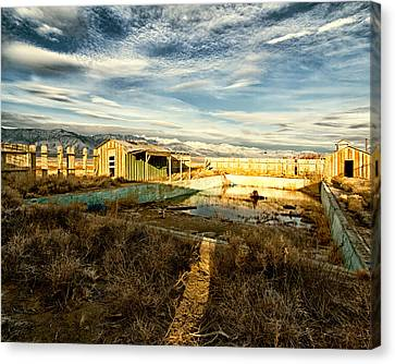 Keeler Swimming Pool Canvas Print by Troy Montemayor
