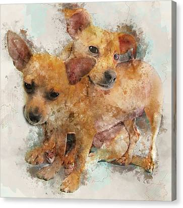 Keeping Each Other Warm - Chihuahua Puppies Watercolor Portrait Canvas Print