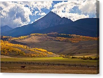 Keller Mountain Grazing Canvas Print